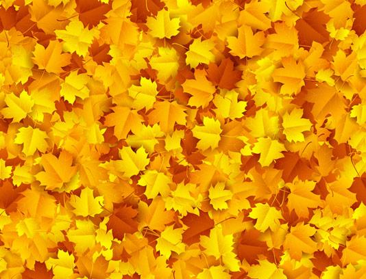 وکتور پس زمینه برگ های پاییزی