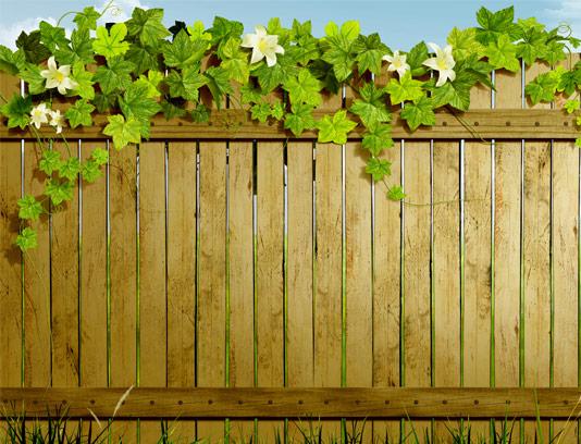 عکس با کیفیت حصار چوبی و گل رونده