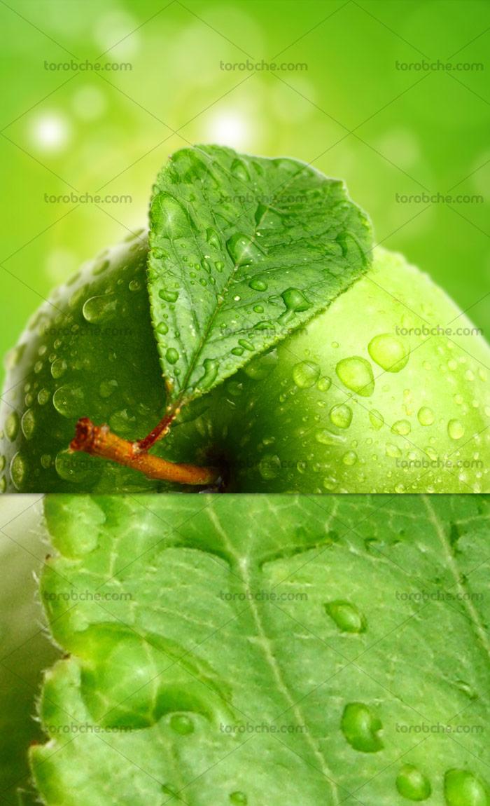 عکس با کیفیت سیب سبز
