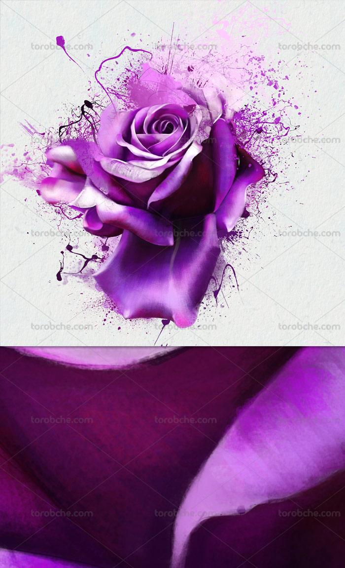 عکس گل با اسپلش رنگ بنفش
