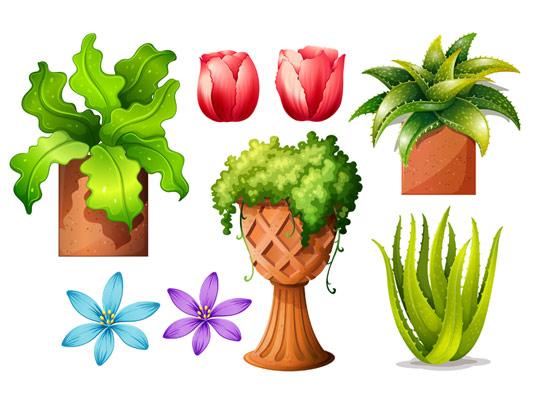 وکتور المان های گل و گیاه با کیفیت