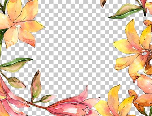 عکس دوربری شده قاب آبرنگ گل