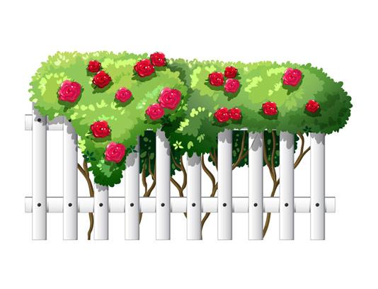 وکتور گل و بته روی حصار چوبی