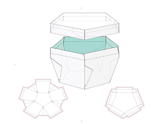 وکتور طرح گسترده بسته بندی شش ضلعی