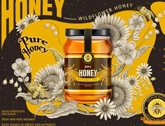 وکتور پوستر تبلیغاتی عسل