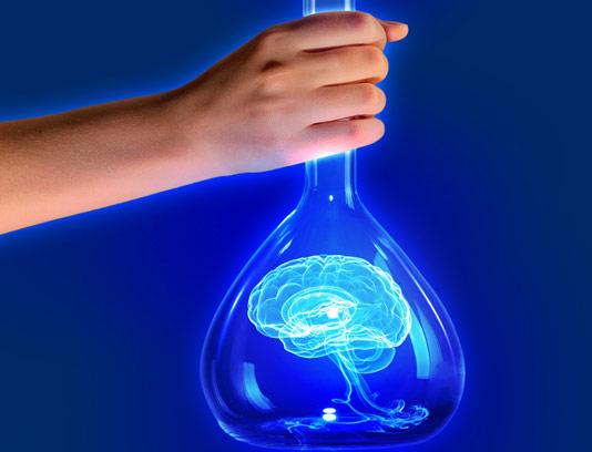 عکس با کیفیت آزمایشگاه مغز و اعصاب