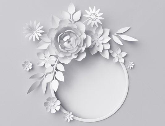 عکس با کیفیت قاب گل و بته کاغذی