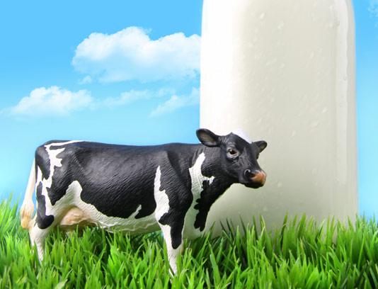 عکس با کیفیت شیر تازه گاوی