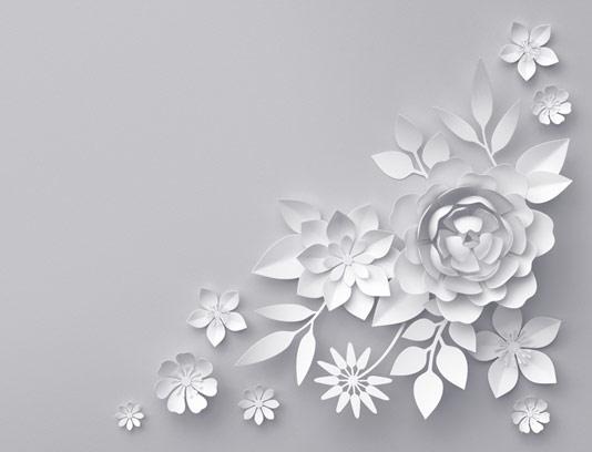 پس زمینه گل های کاغذی