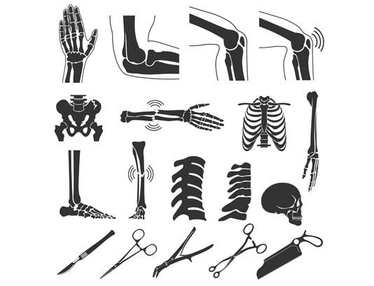 وکتور استخوان قسمت های مختلف بدن