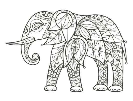 رنگ آمیزی بزرگسالان فیل