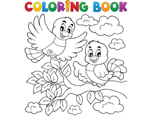 وکتور رنگ آمیزی پرنده مخصوص کودکان