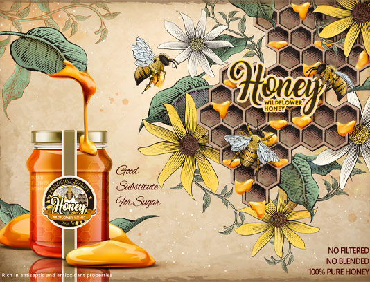 وکتور عسل و کندوی زنبور
