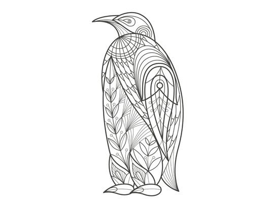 وکتور رنگ آمیزی بزرگسال پنگوئن