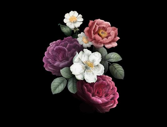 وکتور گل های رنگی با کیفیت