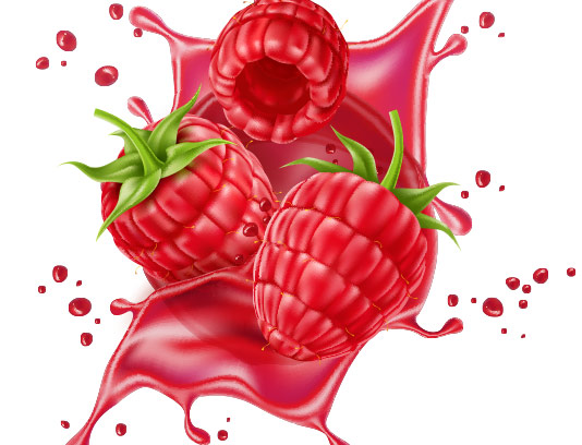 وکتور میوه و اسپلش تمشک