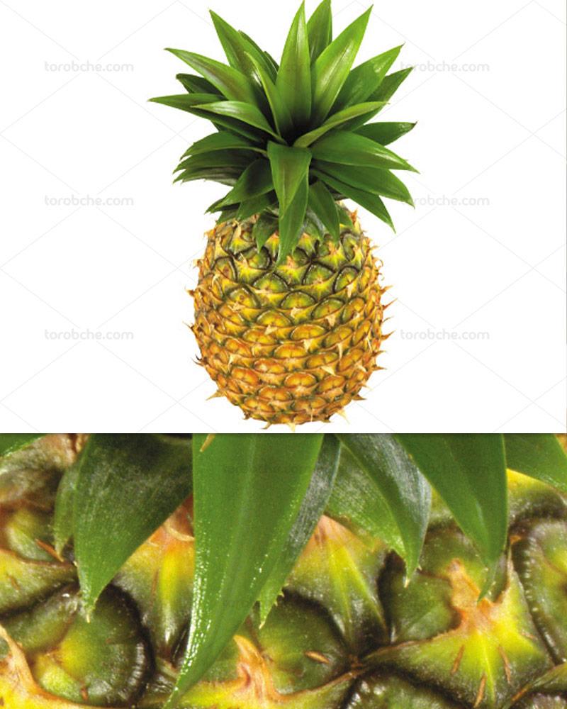 عکس آناناس طبیعی با کیفیت