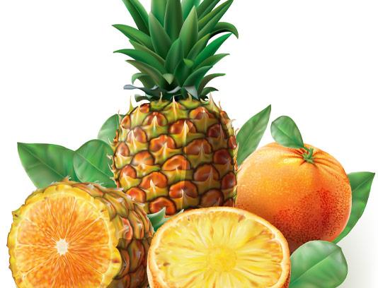 وکتور آب میوه های آناناس و پرتقال