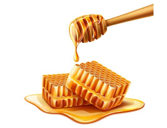 وکتور طرح عسل شیرین