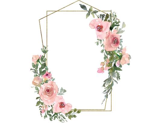 قاب عکس گل های رز صورتی آبرنگی