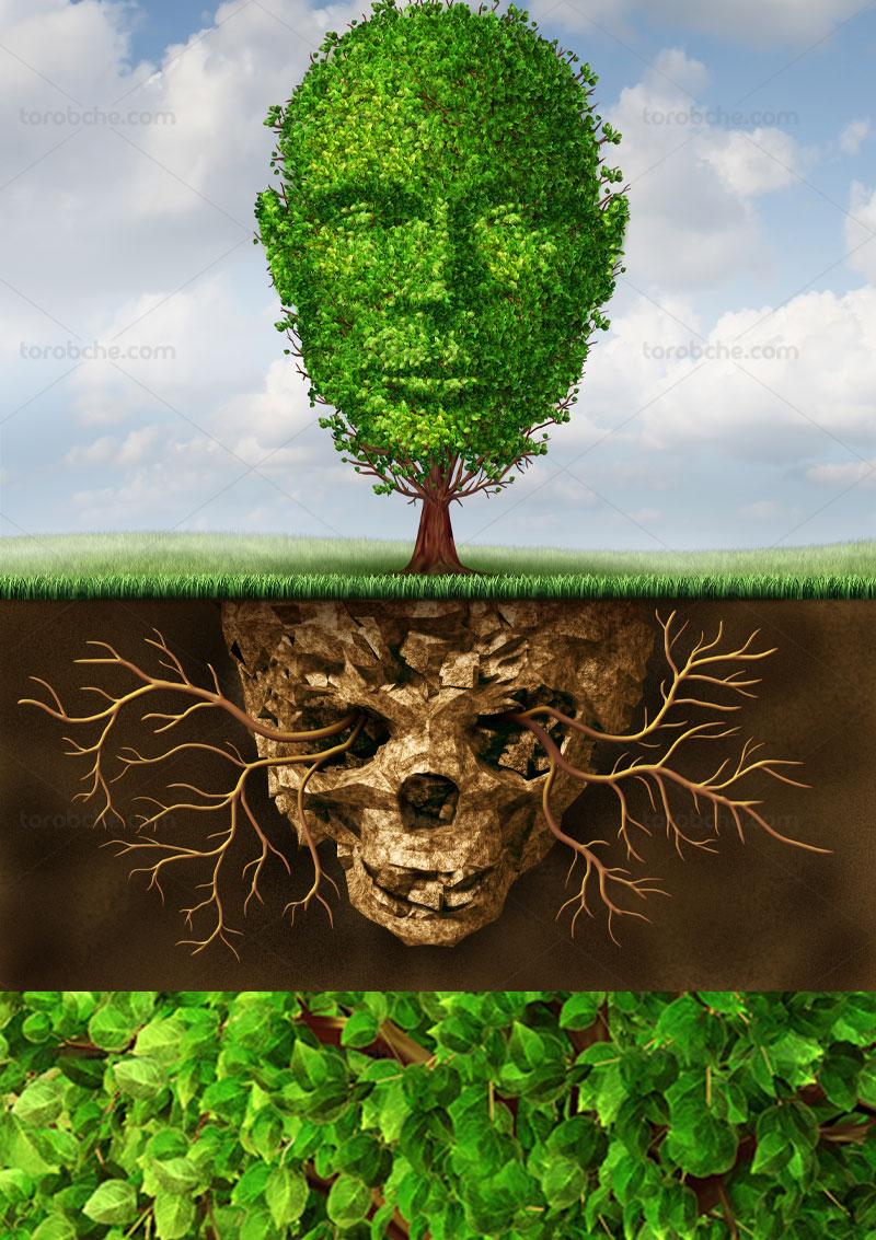 عکس درخت سرسبز مفهومی