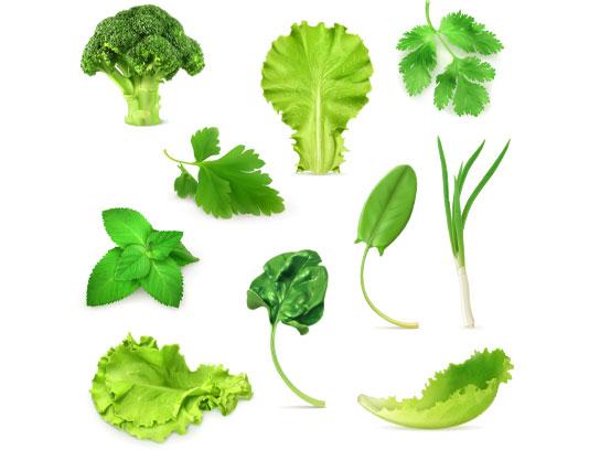 وکتور سبزیجات طبیعی به صورت لایه باز