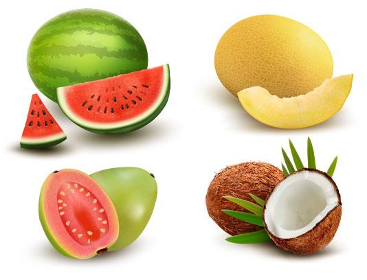 وکتور میوه های گرم سیری