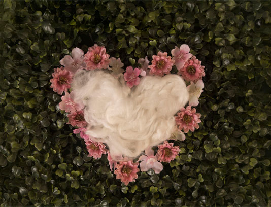 بک دراپ عکاسی نوزاد قلبی