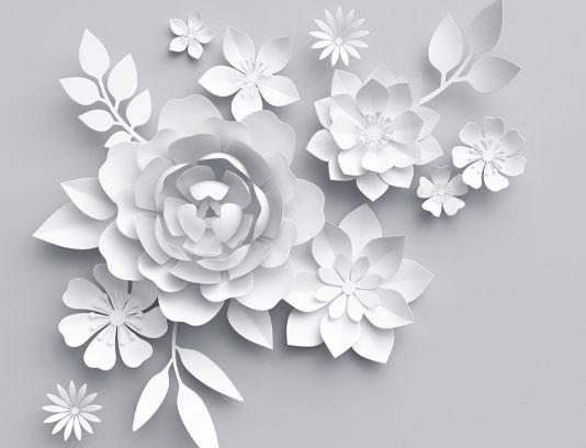 عکس حاشیه گل های کاغذی