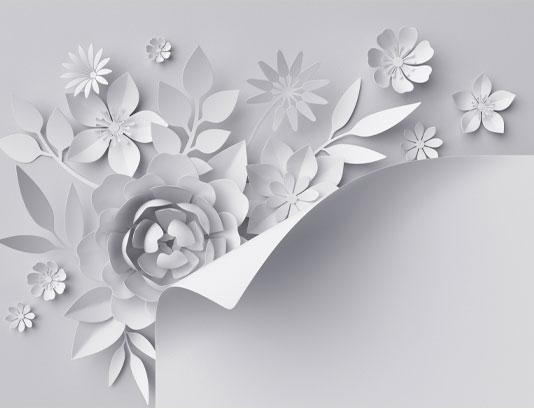 عکس پس زمینه گل های کاغذی سفید