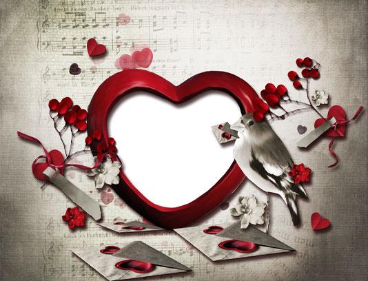 قاب عکس قلب و پرنده