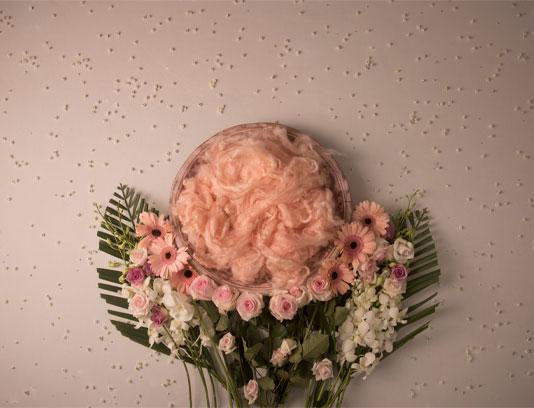 بک دراپ عکاسی نوزاد گل های صورتی