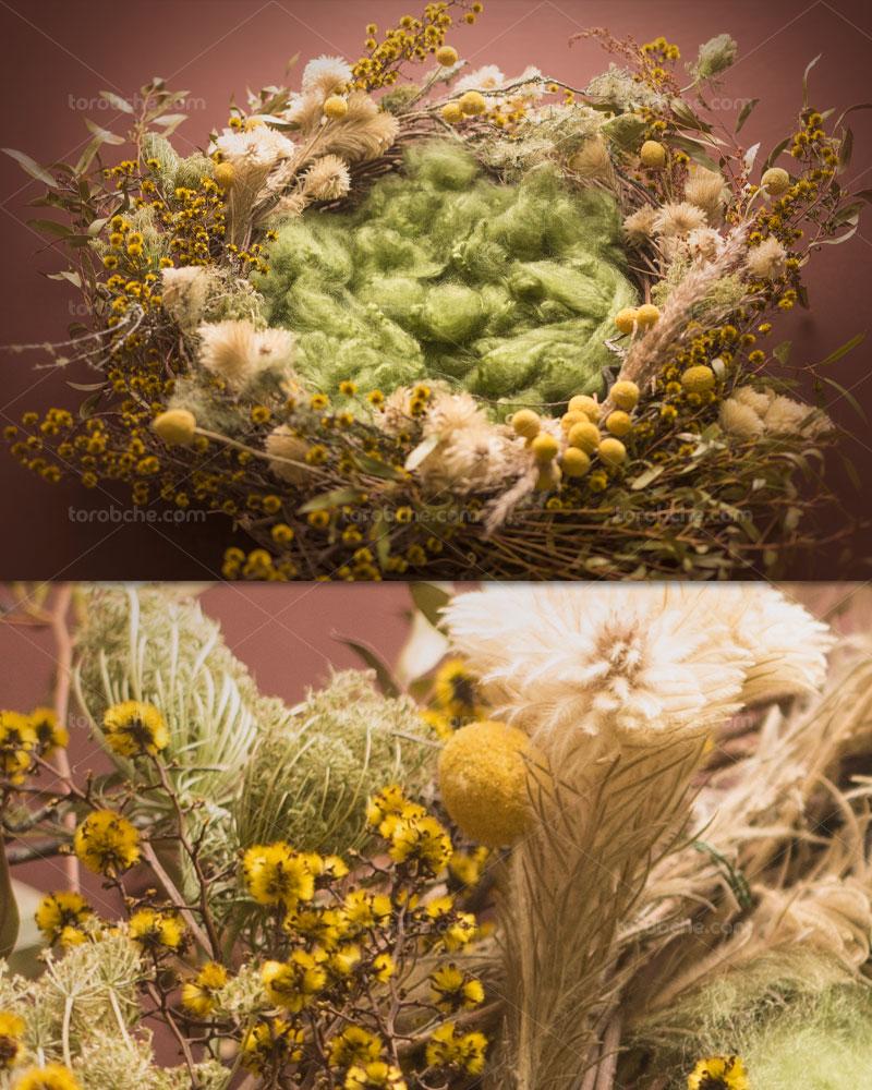 بک دراپ عکاسی نوزاد گل های پاییزی