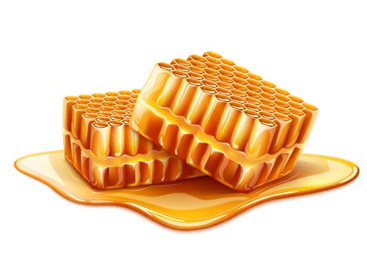 وکتور موم عسل با کیفیت