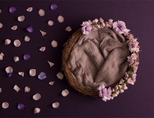 بک دراپ نوزاد گلبرگ های بنفش