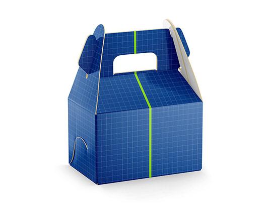 موکاپ جعبه غذای بیرون بر
