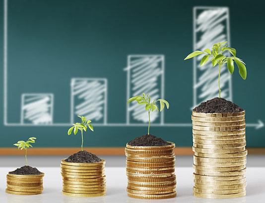 عکس سرمایه گذاری رو به رشد