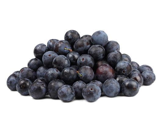 عکس انگور سیاه با کیفیت