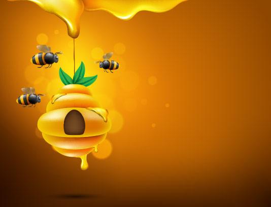 وکتور کندوی زنبور عسل