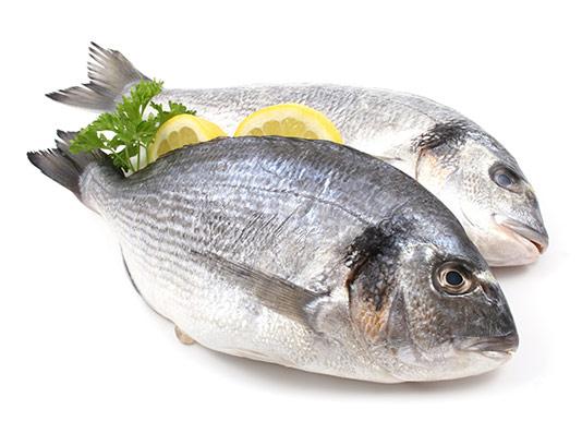 عکس ماهی با لیمو با کیفیت