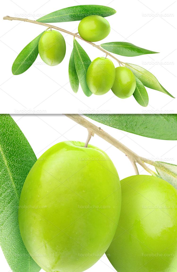 عکس زیتون سبز با کیفیت