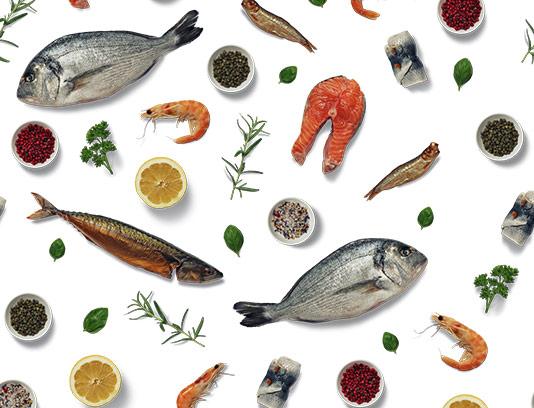 پترن ماهی و غذای دریایی