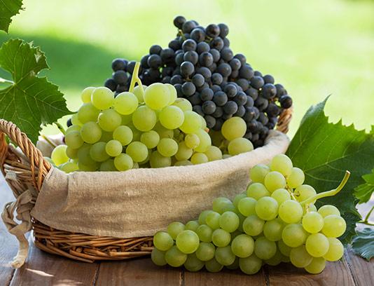 عکس سبد انگور طبیعی