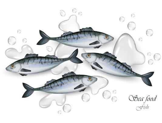 وکتور ماهی و غذای دریایی