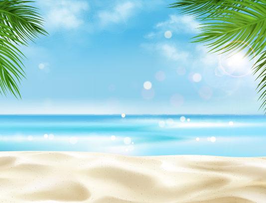 وکتور ساحل با کیفیت