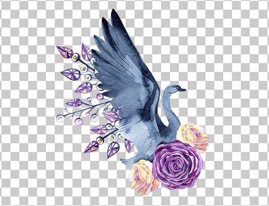 عکس دوربری شده گل و پرنده