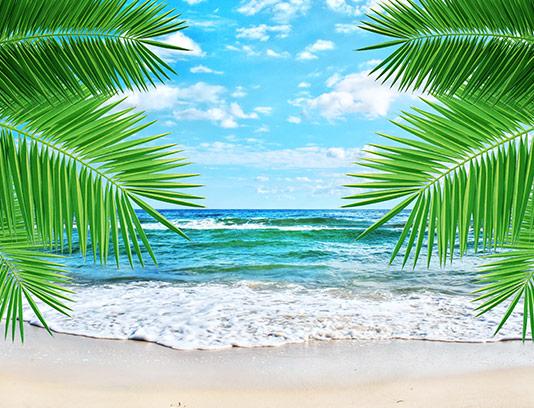عکس ساحل شنی با کیفیت