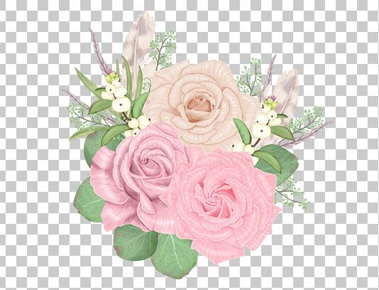 عکس دوربری شده گل رز صورتی