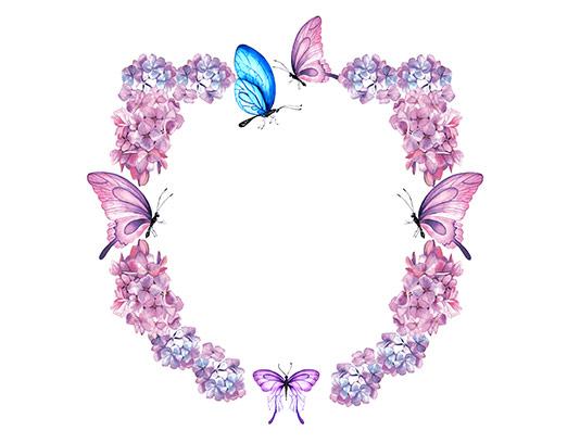 عکس کادر و حاشیه گل و پروانه