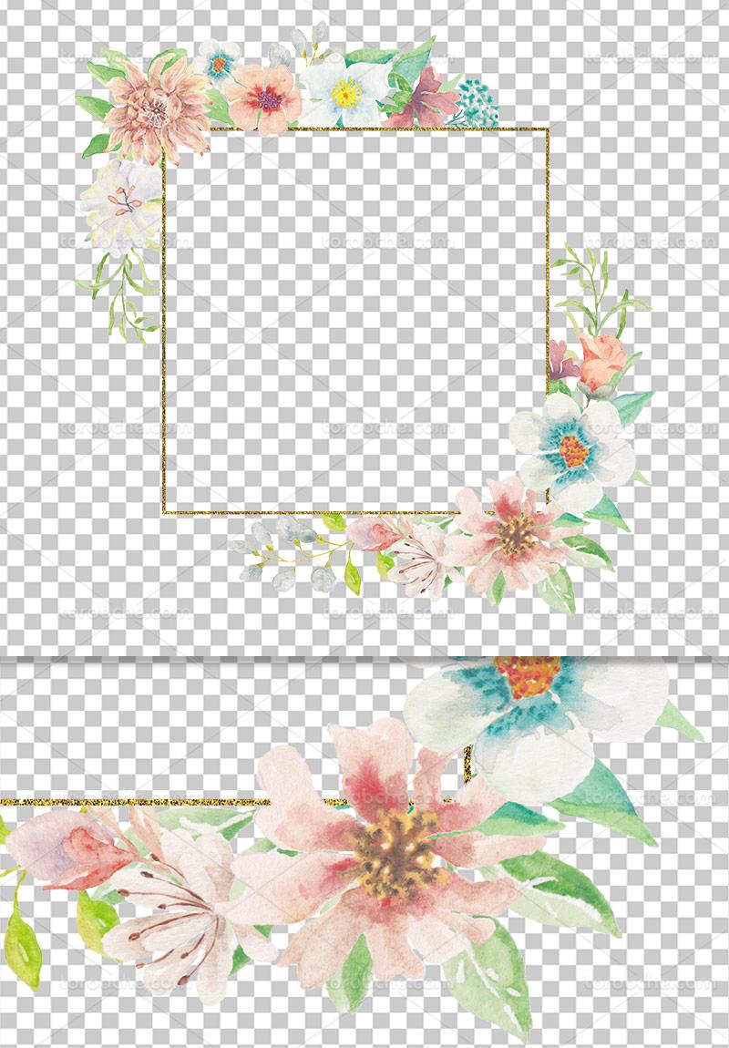 عکس دوربری شده حاشیه گل و برگ